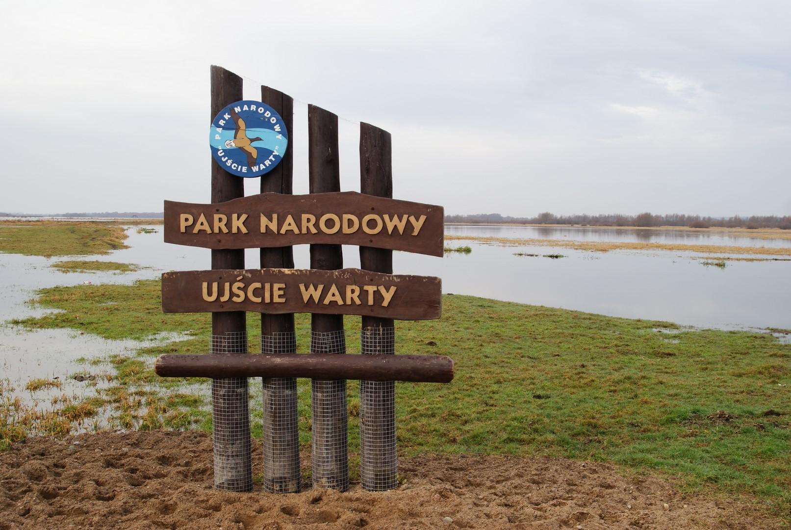 Park Narodowy Ujście Warty, fot. M. Szoszkiewicz