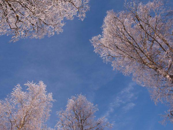 zima - Najlepsze ośrodki narciarskie w Polsce
