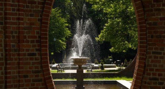 Park, na pierwszym planie fontanna