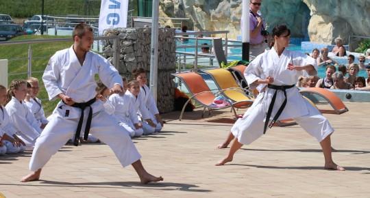 Judocy w sportowych strojach podczas pokazu