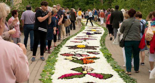 Dywan z kwiatów, po obu bokach idą ludzie