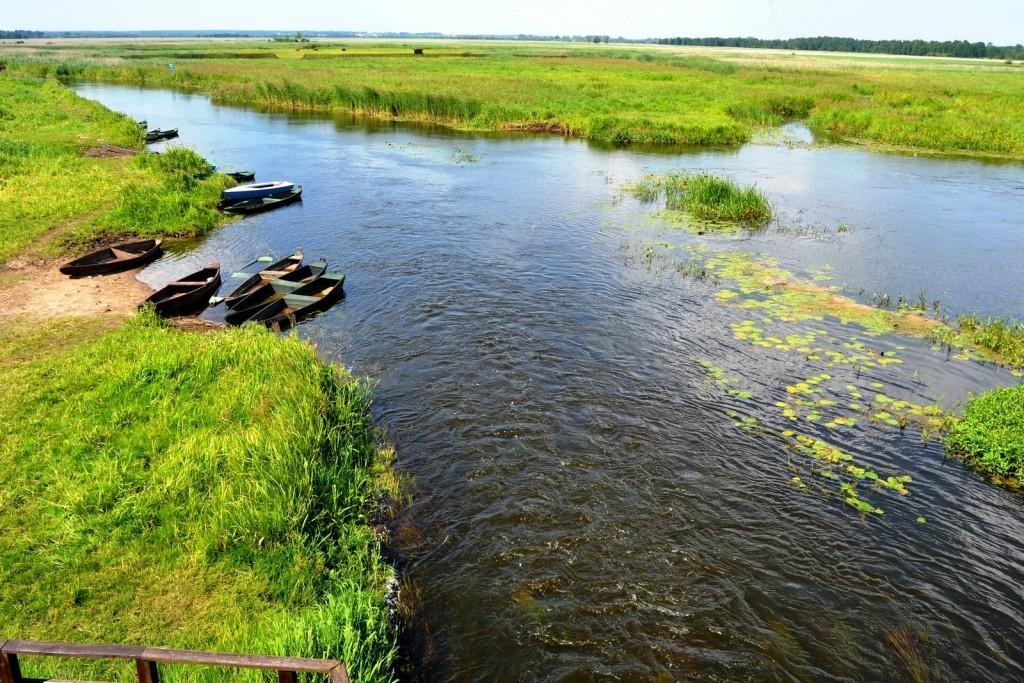 Narew National park Poland