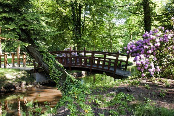 Japanese garden Iłowa
