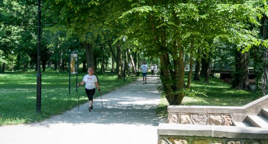 Nordic walking in the park